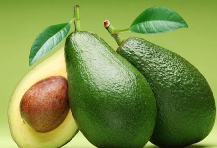 Breastfeeding Mom Diet Recipes - Avocados