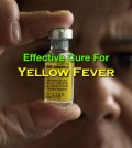 Cure For Yellow Fever