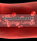 Reasons For Low Iron Levels