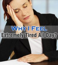 Extremely Tired All Day
