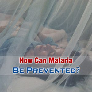 How Can Malaria Be Prevented